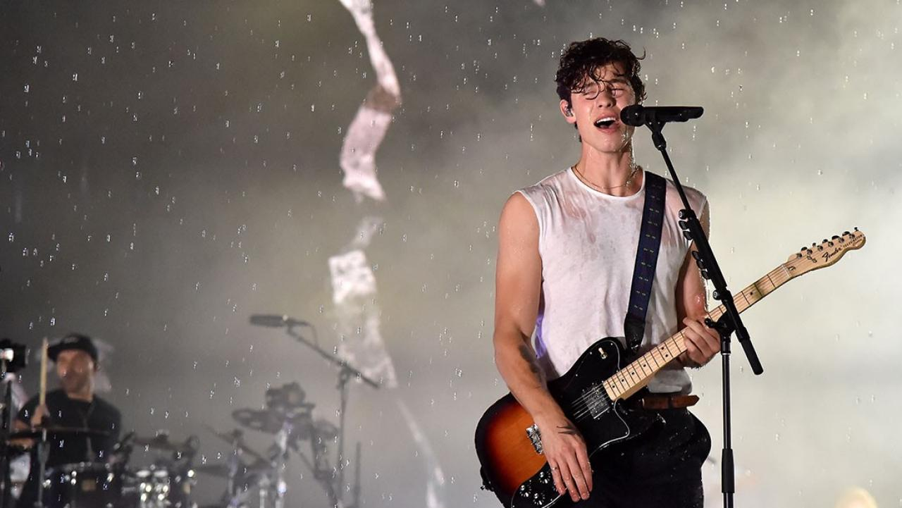 Shawn Mendes Gets Rained On During VMAs 'In My Blood